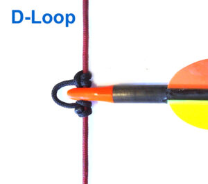 Archery d loop on bowstring