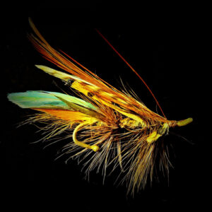 Fly fishing fly.