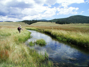 Tips for fly fishing.