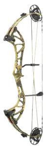 types-of bows compound bow